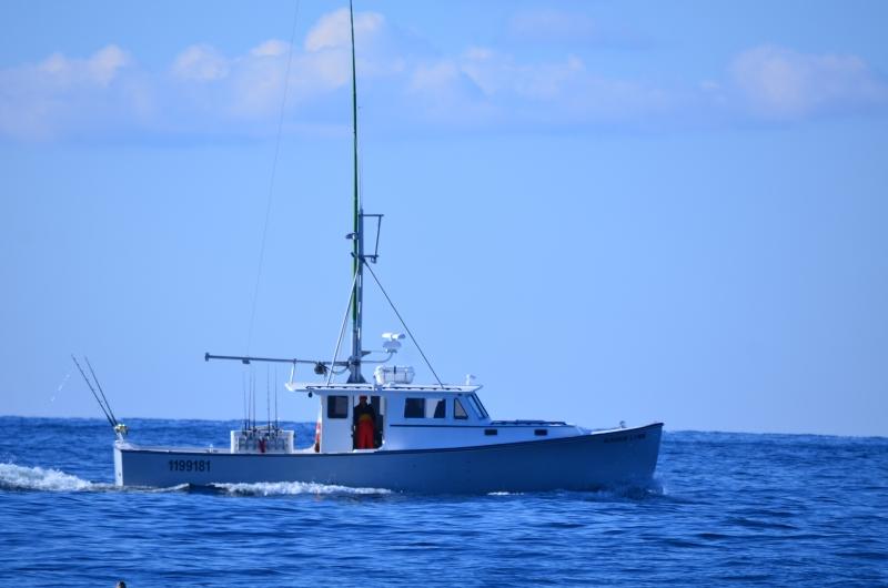 Karen lynn charters gloucester ma fishing tuna cod for Gloucester ma fishing charters