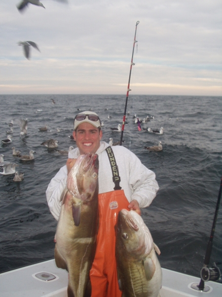 Cod and haadock deep sea fishing Gloucester, MA
