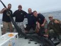 karen lynn charters shark fishing Gloucester, MA