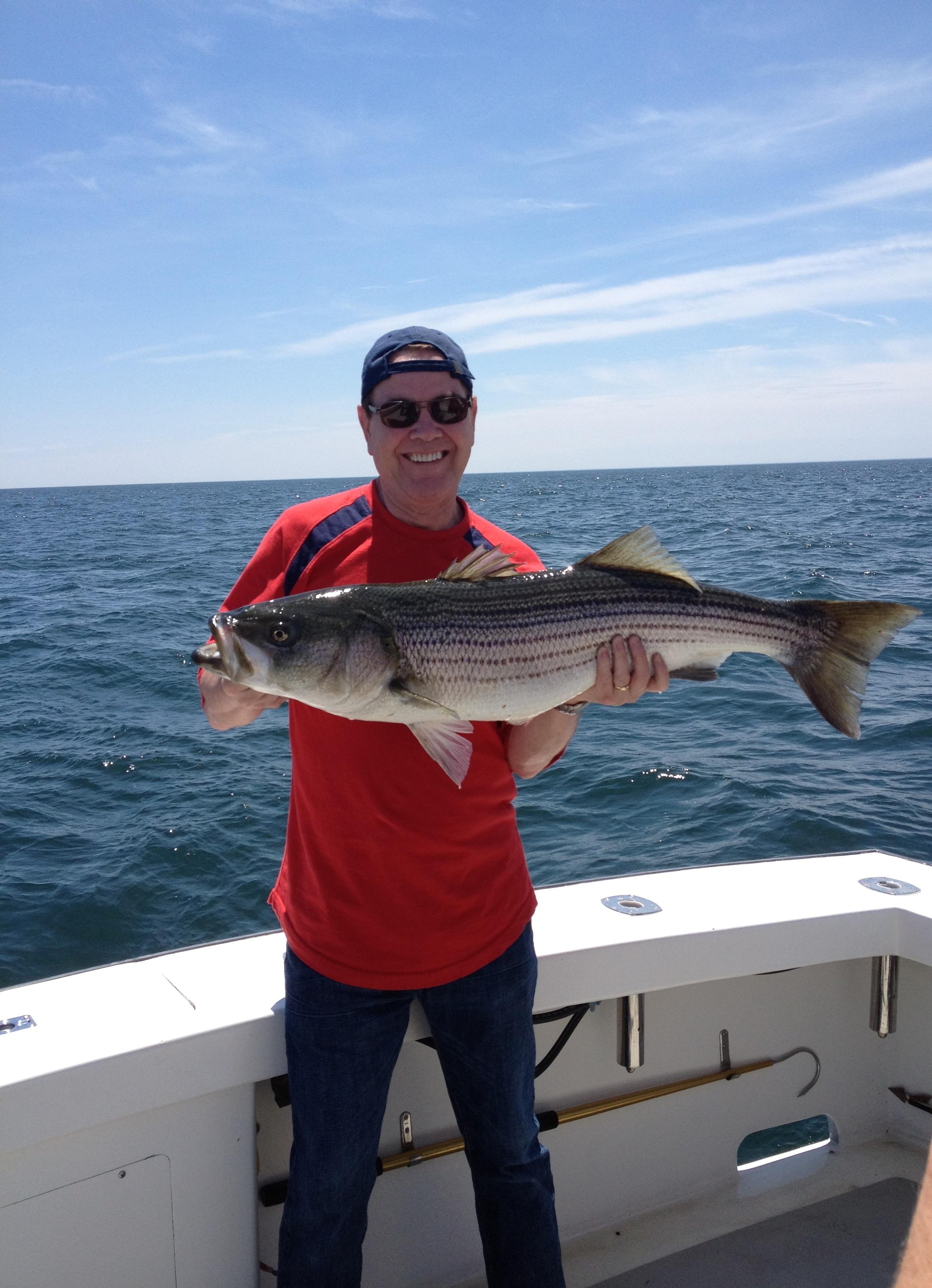 Striped Bass Fishing Karen Lynn Charters Gloucester (2)