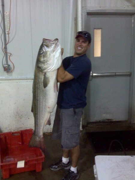 striped bass fishing Gloucester, MA karen lynn charters