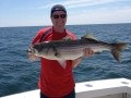 Striped Bass Fishing Karen Lynn Charters Gloucester (2)