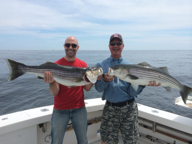 Karen Lynn Charters Gloucester,MA Striped Bass (4)