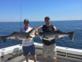 Striped Bass Fishing Karen Lynn Charters Gloucester, MA