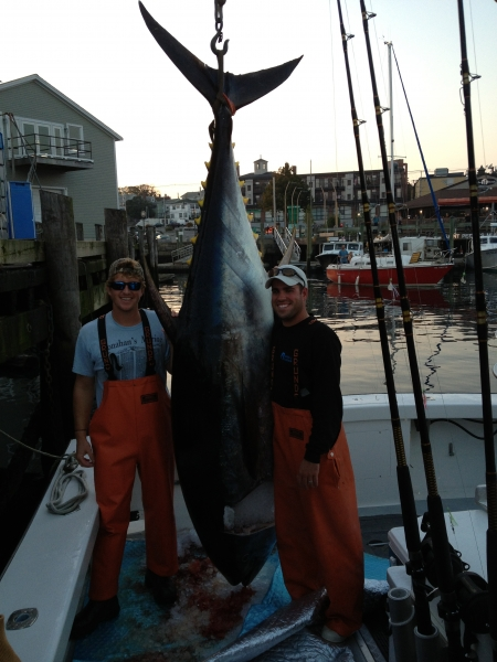Karen Lynn Charters Giant Blue Fin Tuna Fishing Gloucester MA