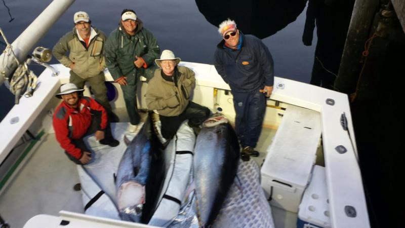 giant bluefin tuna karen lynn charters gloucester, ma