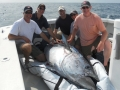 Giant Bluefin Tuna Karen Lynn Charters Gloucester,MA.