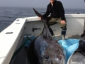 Karen Lynn Charters Giant Blue Fin Tuna Fishing