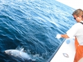 Karen Lynn Charters tuna fishing Gloucester, MA