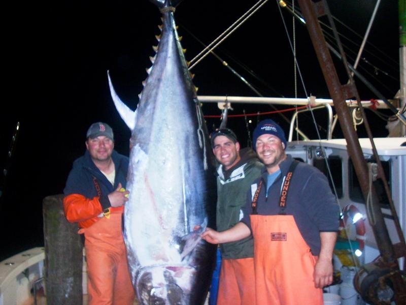 Giant bluefin tuna gloucester, MA karen lynn charters