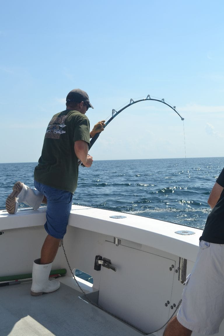 Giant tuna archives fishing charters gloucester ma for Ma fishing report