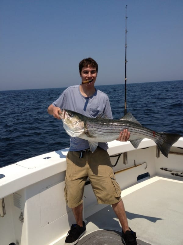 striped bass fishing massachusetts Karen Lynn Charters