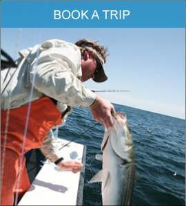 Karen Lynn Charters - Book a Fishing Charter Gloucester MA