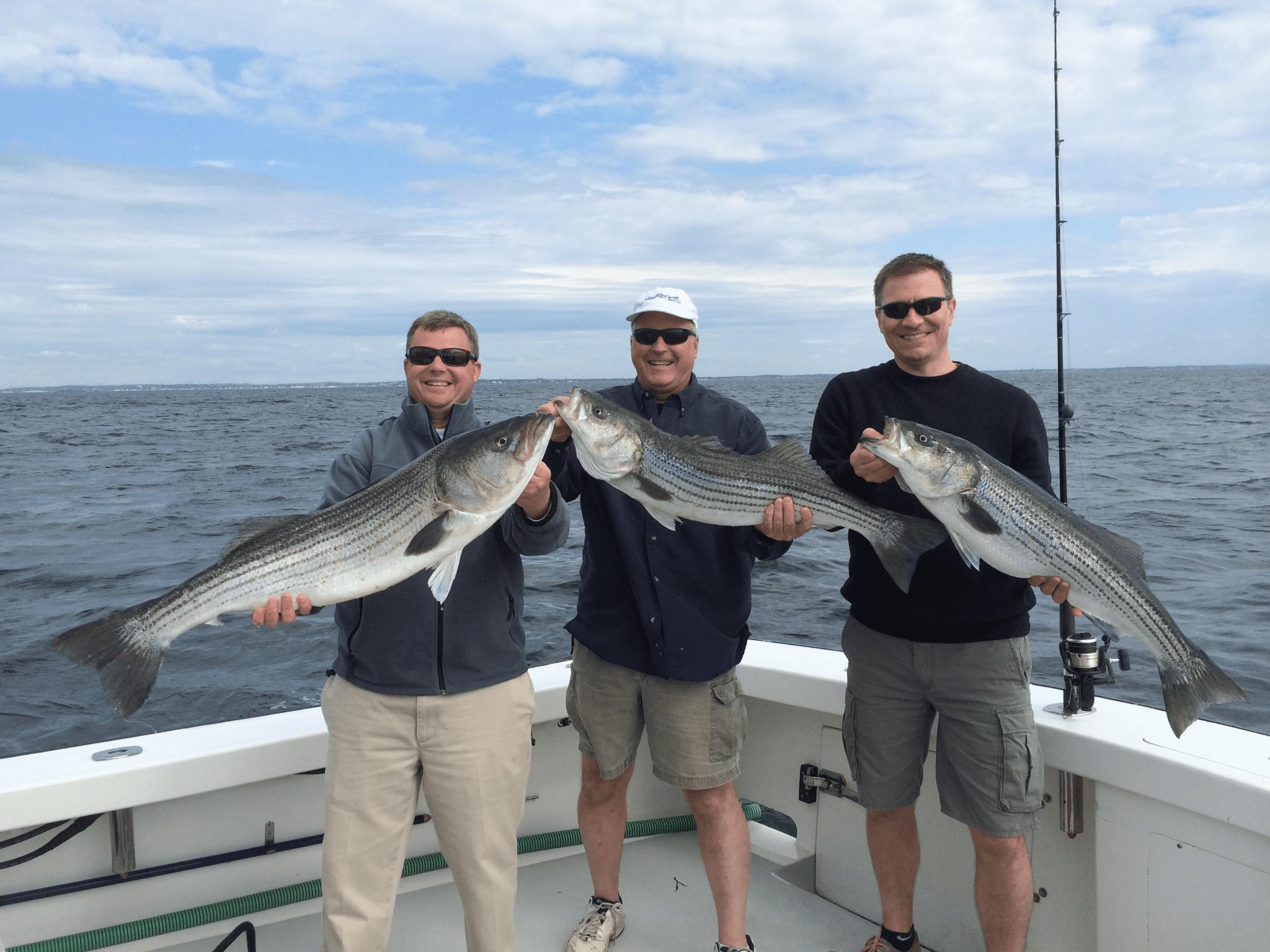 Fishing reports karen lynn fishing charters gloucester for Bass fishing guide
