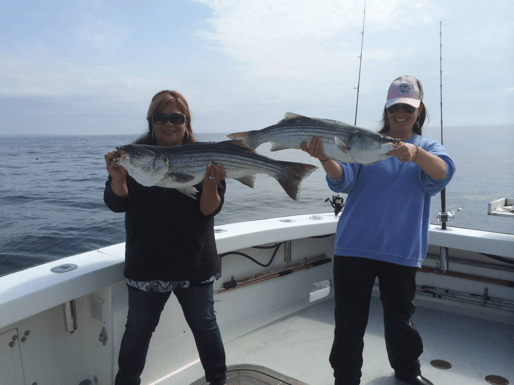 karen lynn charters,striped bas fishing, gloucester,ma