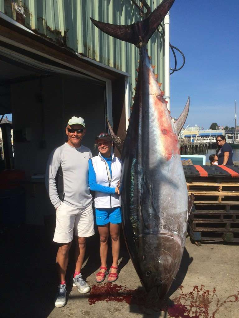 giant tuna, tuna fishing, karen lynn charters, gloucester,ma