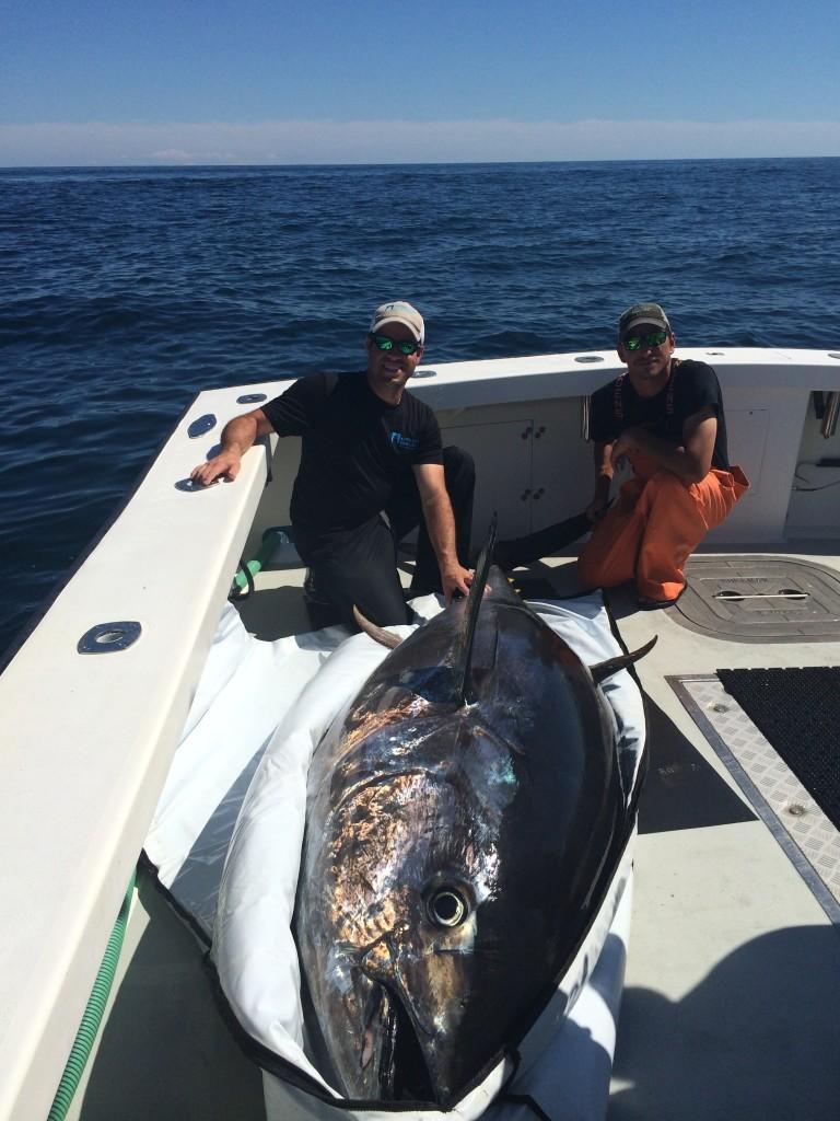 karen lynn charters giant bluefin tuna fishing Gloucester, MA