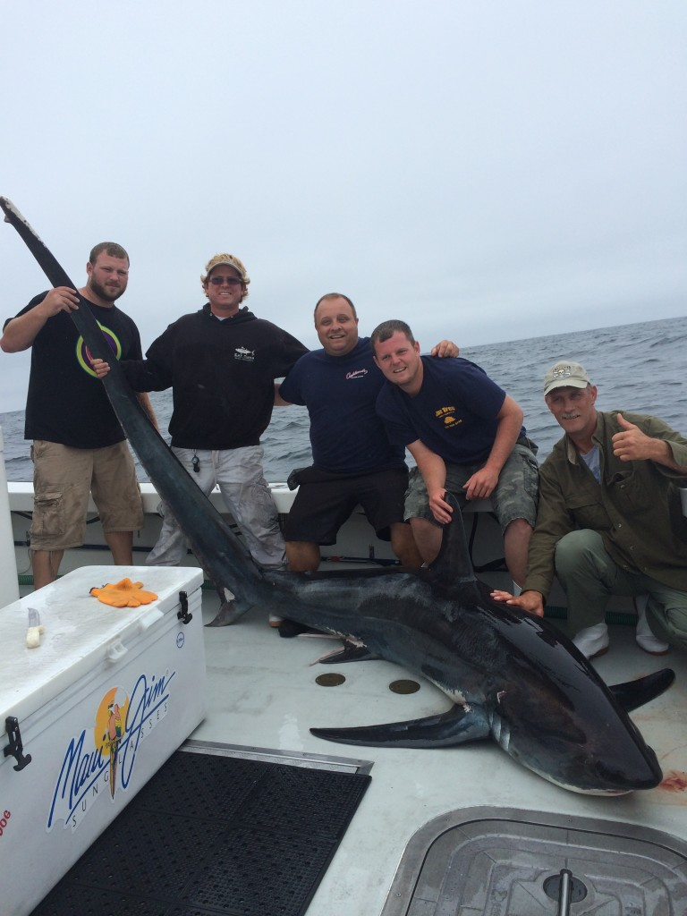 shark fishing Gloucester, MA Karen Lynn Charters