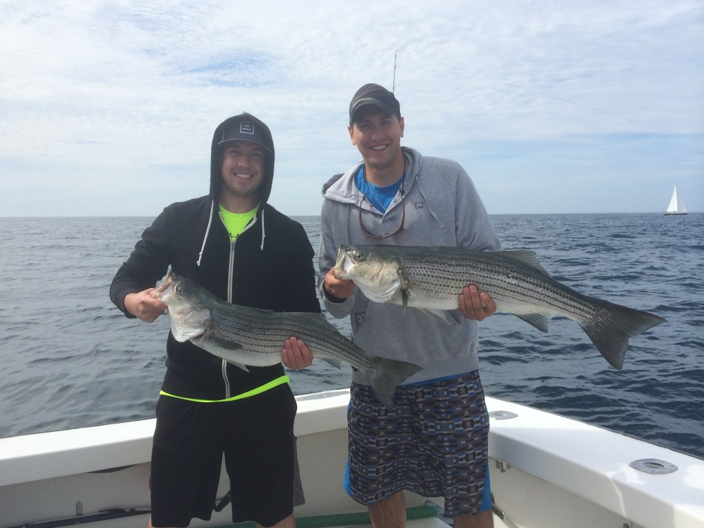 striped bass fishing karen lynn charters gloucester,ma