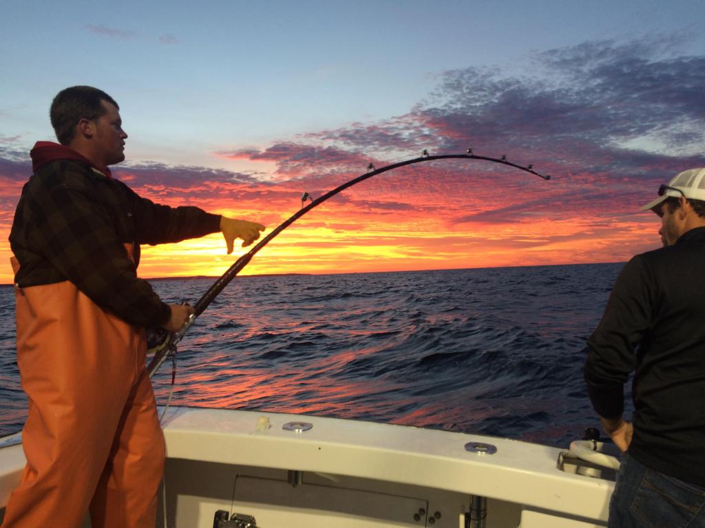 bluefin tuna fishing Gloucester, MA Karen Lynn Charters